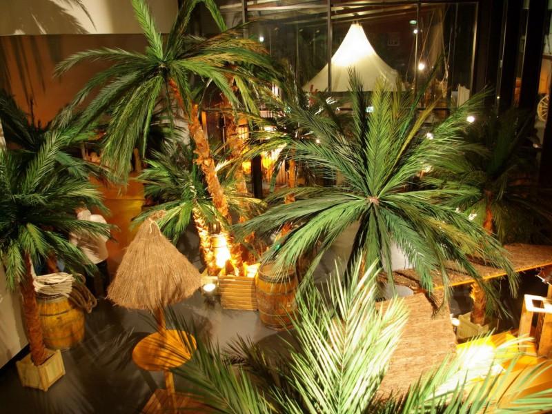 Location decor exotique décor à thème nova sur st malo