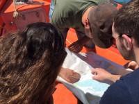 Rallye nautique en zodiac dans la baie de St Malo en Team building par Nova