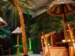 Hawaï / Beach Boys décor à thème nova loc déco bretagne, normandie, pays de loire, région parisienne