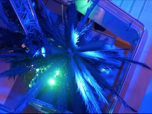 Décor thématique corsaire et pirate au Palais du Grand Large St Malo. Prestation technique sonorisation, éclairage, vidéo.