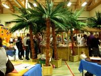 Parc de loisirs thème exotique, tropiques, Caraïbes