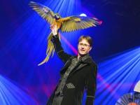 Magie Cabaret spectacle